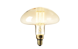 Led lamp filament E27 6W 600lumen diam195mm h197mm - LED-lampen